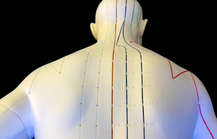 Acupuncture Heart Disease Blood And Oxygen Benefit