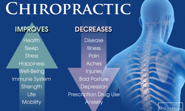 How Does Chiropractic Promote Overall Wellness?