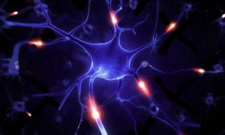 Nerve Repair and Acupuncture